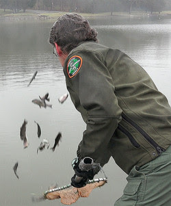 TWRA's Annual Winter Trout Stocking Program Is Underway
