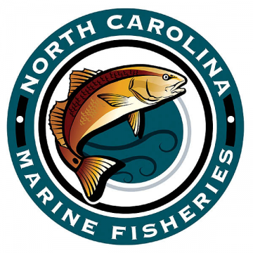Circle Hooks Required for Stripers Beginning Jan. 1