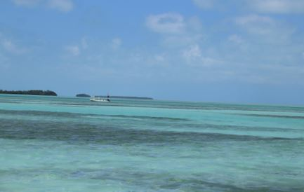 BTT Supports Flats Conservation in Belize