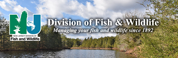 New Jersey Fisheries Forums Online Feb. 27