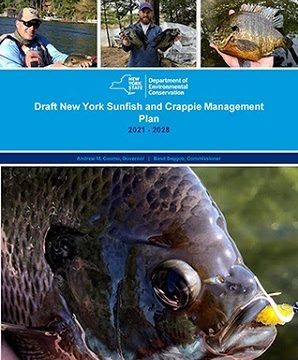 NY DEC Sets New Management Plan for Panfish