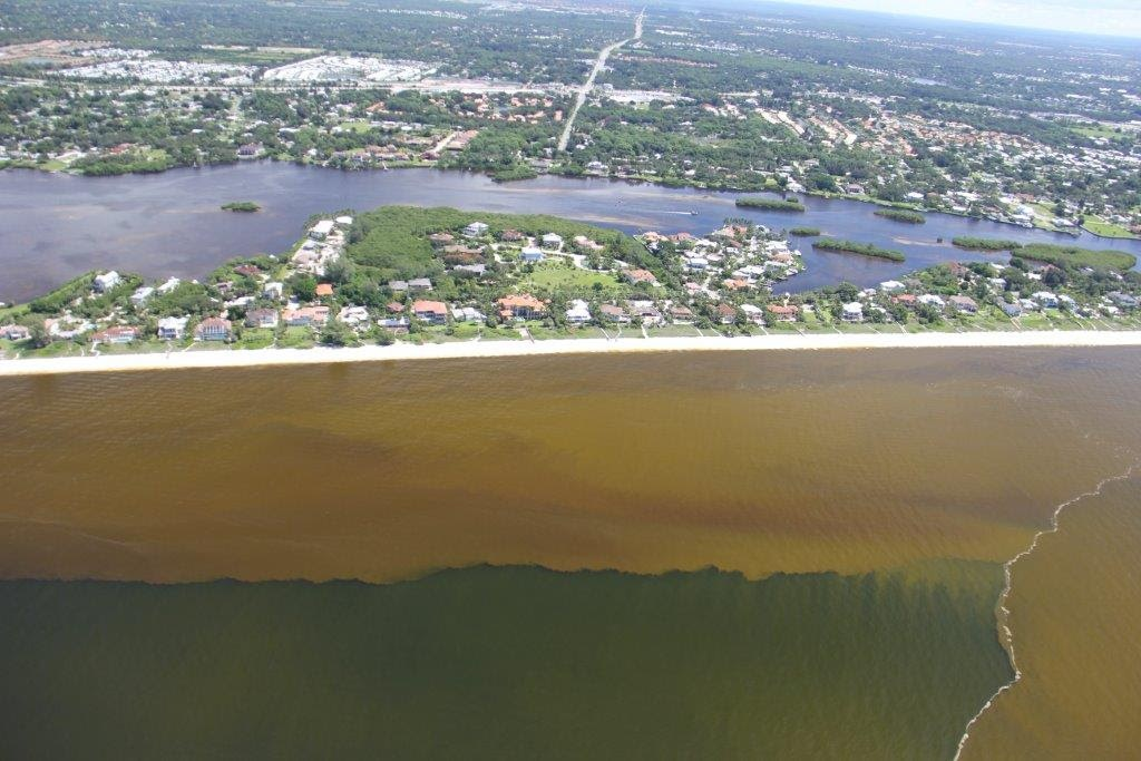 Red Tide Persists in SW Florida