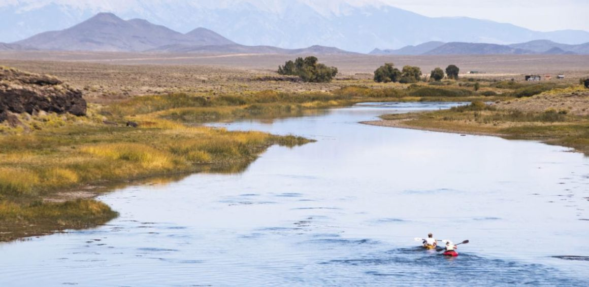 Rio Grande and Gila River Watersheds get Nearly $600,000 in Restoration Grants