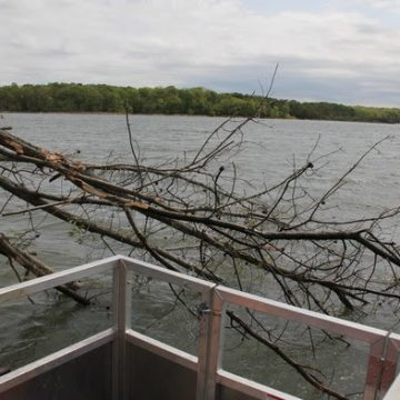 Build More Fish Habitat for Improved Angling