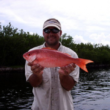 "New Species Added to ""Catch a Florida Memory"" Program"