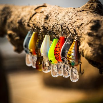 Top Freshwater Lure Picks Now