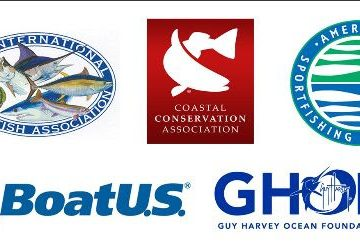 Recreational Fishing and Boating Groups Back Forage Fish Bill