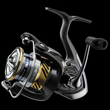Small Price, High Quality: Daiwa Laguna LT