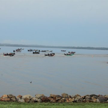 Options Abound For Bassmaster Elite Series Event At Lake Fork