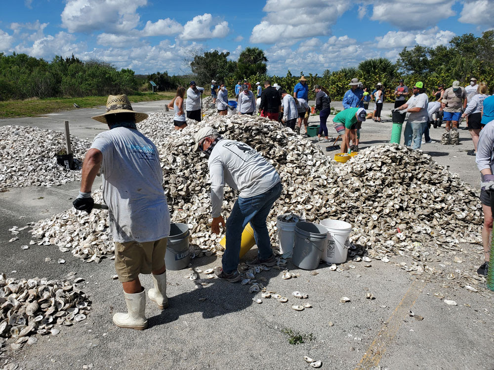 Volunteers Needed for Oyster Project April 17 in New Smyrna Beach