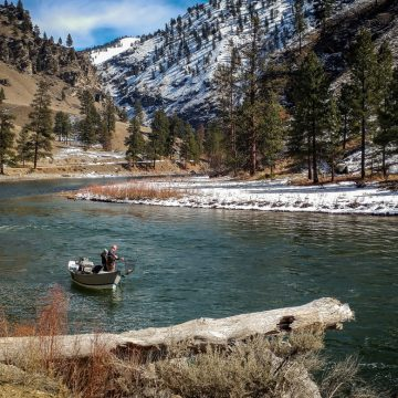 Idaho's Salmon May Adapt to Warming Climate–with Help