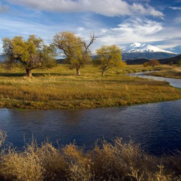 Shasta River Agreement a Win for Coho's and Landowners