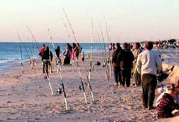 N.J. Governor's Surf Fishing Tourney May 23