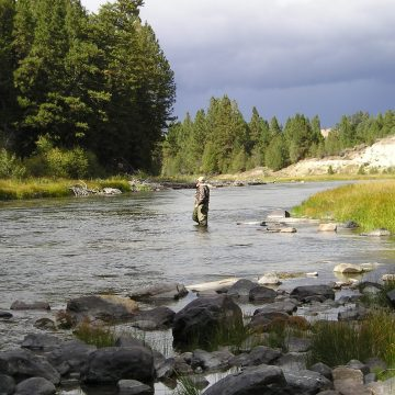 Angling as a Path to Conservation Stewardship