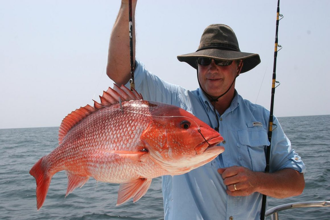 NOAA Fisheries Comments on Great Red Snapper Count