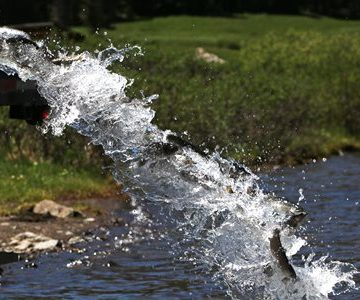 Wyoming Offers Interactive Fishing Guide