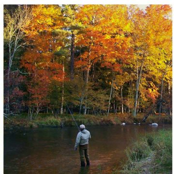 Fly Fishers International Supports Michigan Conservation Projects