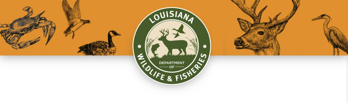 Anglers Charged with Cheating in Louisiana Bass Tournament