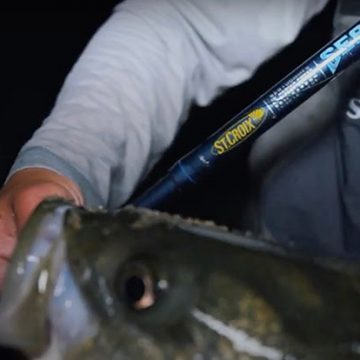 St. Croix Showcases New-for-2022 Rod Introductions