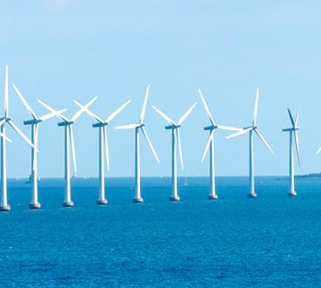 Fish-Attracting Wind Turbines May Come to Gulf of Mexico