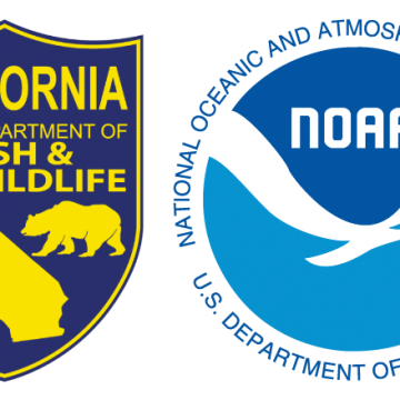 California DFW and NOAA Fisheries Revive Drought Initiative to Protect Fish