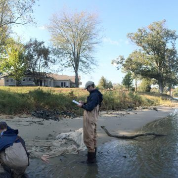 Fisheries Research Projects to Connect Chesapeake Bay Fish, Changing Habitat