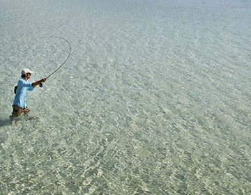 Ready for a Challenge? Try Saltwater Fly Fishing