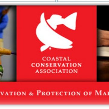 Major Victory for Citizen Coalition in NC Coastal Fisheries Lawsuit