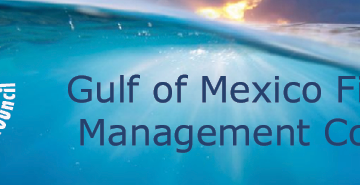 Gulf Council to Hold In-Person and Virtual Public Hearings on Cobia