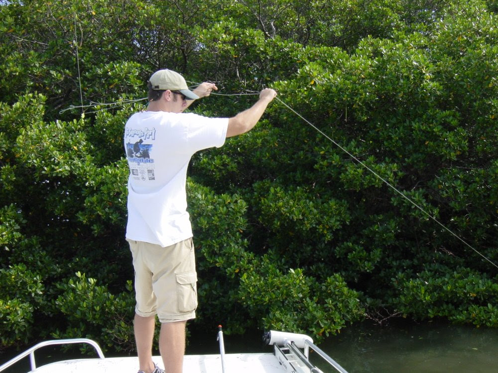 Fishing Line Cleanup on Tampa Bay
