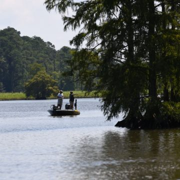 Florida's Harris Chain Plan Ready for Public Review